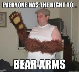 (although perhaps not literal bear arms.)