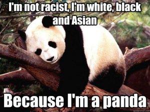 racist panda