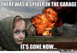 disaster girl meme 1