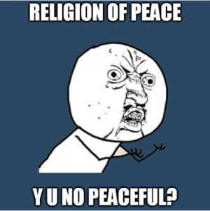 islamophobia 2