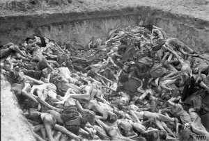 One of the mass graves at Belsen concentration camp. BU 3741 Part of WAR OFFICE SECOND WORLD WAR OFFICIAL COLLECTION Malindine E G (Capt) No 5 Army Film and Photographic Unit