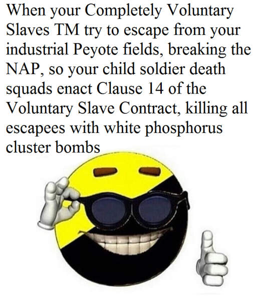 ancap meme 1